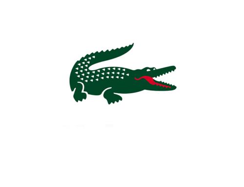 Crocodile case